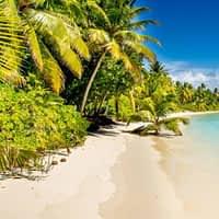 Sortida a la platja – 4t d'ESO