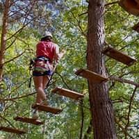 Sortida al Bosc Vertical